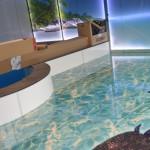 3D Fußboden mit Schildkröten